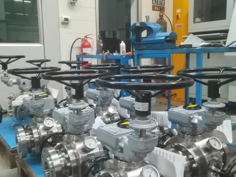 pigging-valves