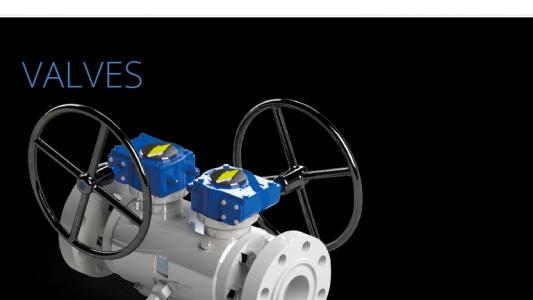 CAM Valves hereby appoints HS ENGINEERING AS (HSE) Mr. Erik Skjeldal