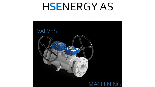 CAM Valves hereby appoints HS ENGINEERING AS (HSE) Mr. Erik Skjeldal